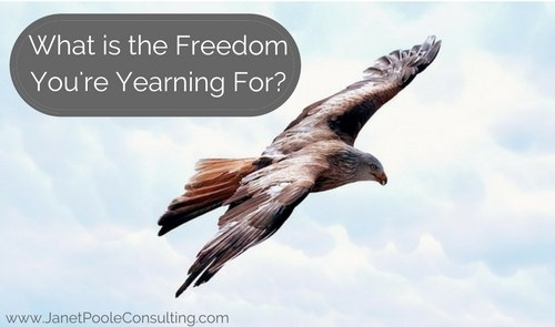 What is the Freedom You're Yearning For?